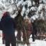 Üleelamine talvises looduses
