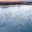 15.Võhandu maraton 2020